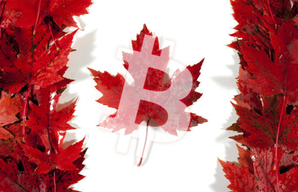 A Bank of Canada report says that 58% of Canadians use Bitcoin for investment purposes