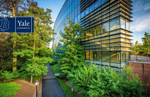 Исследование Йельского университета: Каждый инвестор должен иметь в своем портфеле не менее 6% биткойнов