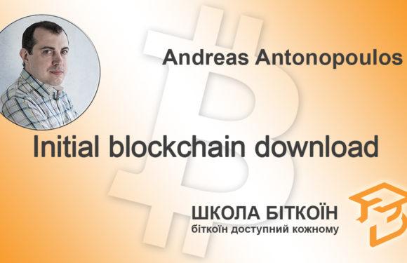 Initial blockchain download