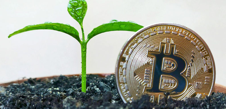 Bitcoin – зелений майнінг